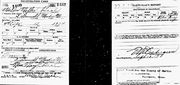WWI Draft Registration Walter Miller Beal