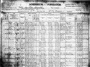 1900 US Census, Pope County, Minnesota