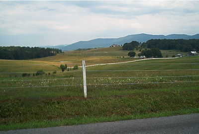 Vista in Southern Greene County, TN