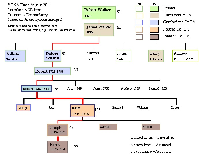 Image:YDNA Lineage for Letterkenny Walkers.jpg