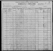 Hutcherson Family, 1900 Census